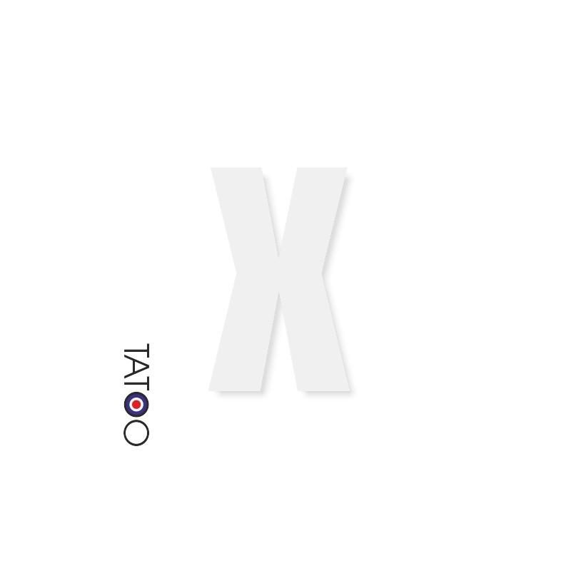 lettre polystyrène X caractère square volume