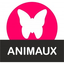 supports bonbons animaux